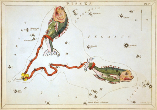 Art Prints of Pisces, Plate 27, View of the Heavens by Sidney Hall