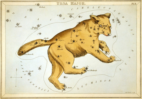 Art Prints of Ursa Major, Plate 9, View of the Heavens by Sidney Hall