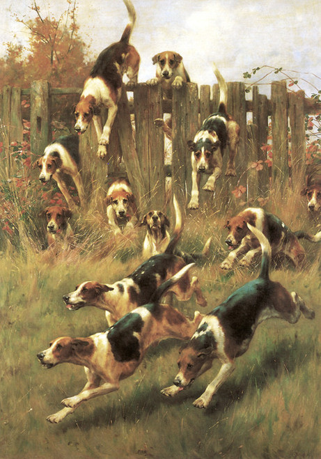 Art Prints of Hounds at Full Cry by Thomas Blinks