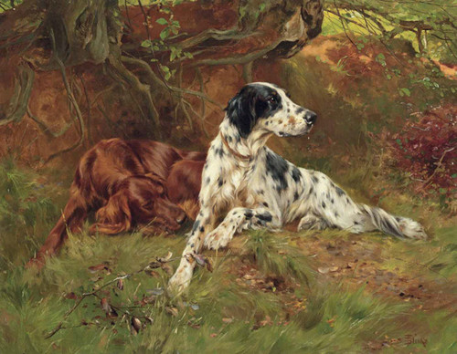 Art Prints of Setters Waiting for the Guns by Thomas Blinks