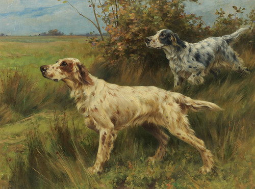 Art Prints of Two English Setters on Point by Thomas Blinks