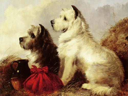 Art Prints of Terriers by Thomas William Earl