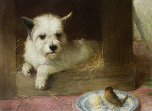 Art Prints of A Terrier and a Robin by Thomas William Earl