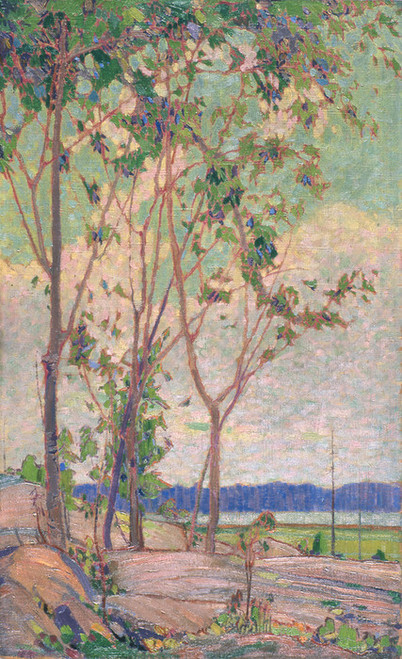 Art Prints of A Spring Decoration by Tom Thomson