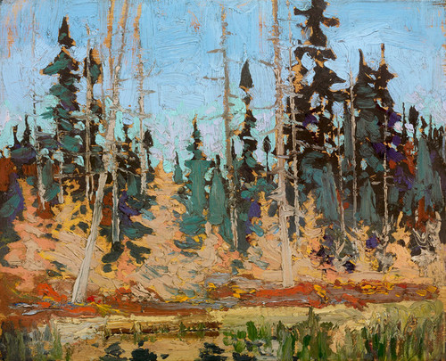 Art Prints of Spruce and Tamarack by Tom Thomson