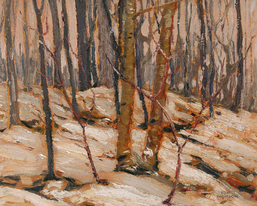 Art Prints of Winter Sunset, Algonquin Park by Tom Thomson
