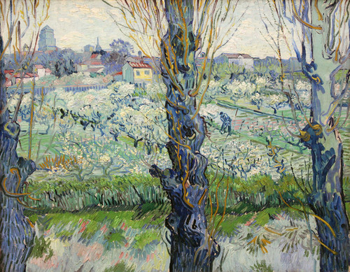 Art Prints of A View of Arles of Flowering Orchards by Vincent Van Gogh