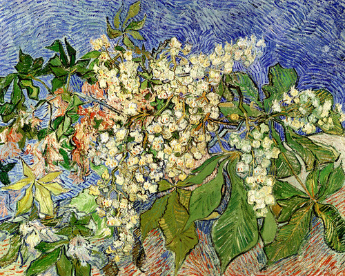 Art Prints of Blossoming Chestnut Branches by Vincent Van Gogh