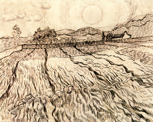 Art Prints of Enclosed Field with Rising Sun by Vincent Van Gogh