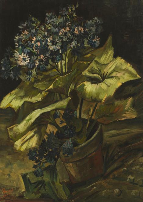 Art Prints of Cineraria by Vincent Van Gogh