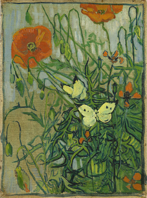 Art Prints of Butterflies and Poppies by Vincent Van Gogh