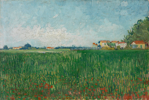 Art Prints of Field of Poppies by Vincent Van Gogh