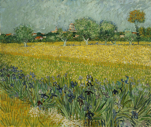 Art Prints of Field with Flowers near Arles by Vincent Van Gogh