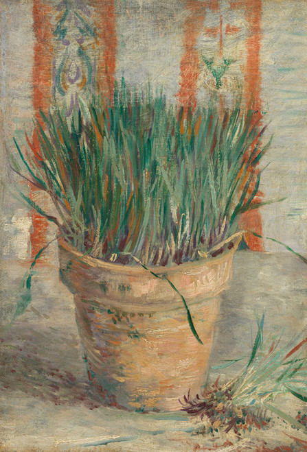 Art Prints of Flowerpot with Garlic Chives by Vincent Van Gogh
