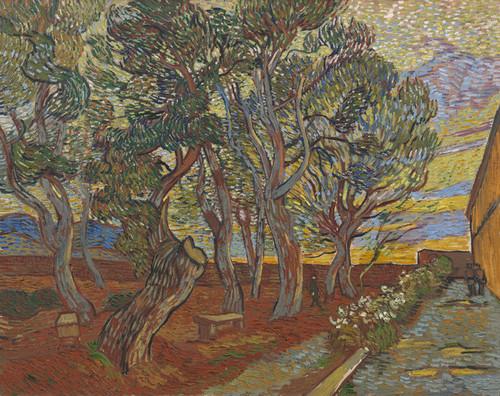 Art Prints of Garden of the Asylum by Vincent Van Gogh