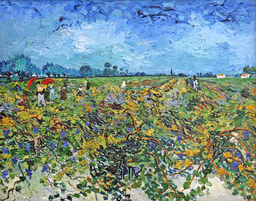 Art Prints of Green Vineyard by Vincent Van Gogh