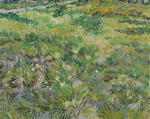 Art Prints of Long Grass with Butterflies by Vincent Van Gogh