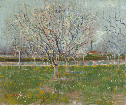 Art Prints of Orchard in Blossom, Plum Trees by Vincent Van Gogh
