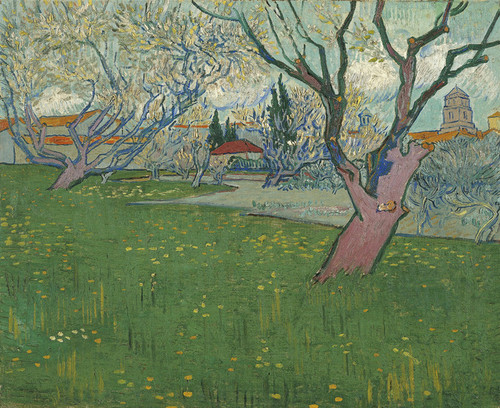 Art Prints of Orchards in Blossom, View of Arles by Vincent Van Gogh