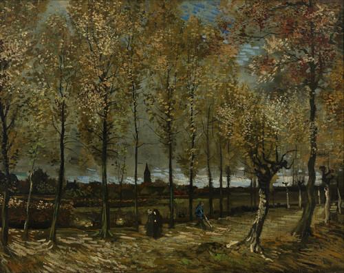 Art Prints of Poplars near Nuenen by Vincent Van Gogh
