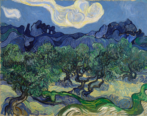 Art Prints of The Olive Trees, 1889 by Vincent Van Gogh