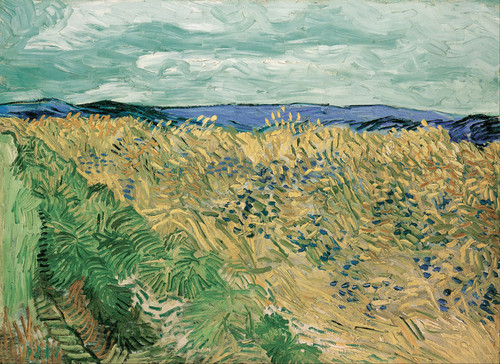 Art Prints of Wheatfield with Cornflowers by Vincent Van Gogh
