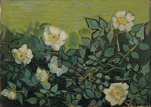 Art Prints of Wild Roses by Vincent Van Gogh