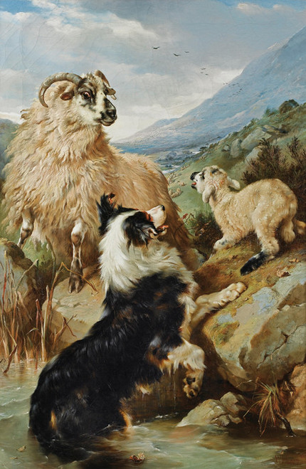 Art Prints of Rescued by Walter Hunt
