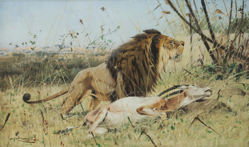 Art Prints of A Lion and His Prey by Wilhelm Kuhnert