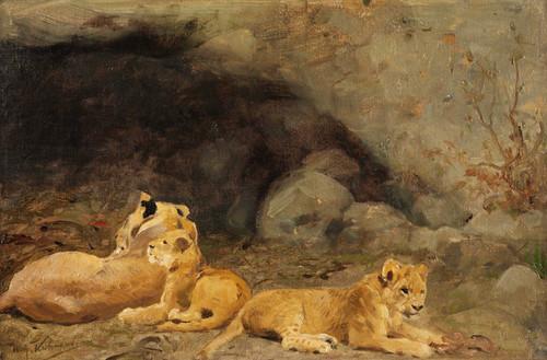 Art Prints of Lion Cubs by Wilhelm Kuhnert