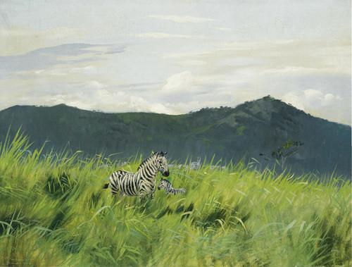 Art Prints of Zebra on the Steppe by Wilhelm Kuhnert