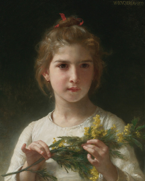 Art Prints of Mimosa by William Bouguereau