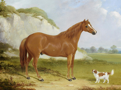 Art Prints of A Chestnut Horse and Spaniel in a Landscape by William Barraud
