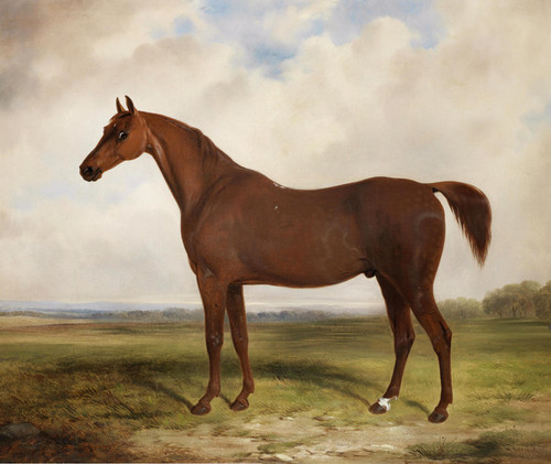 Art Prints of A Chestnut Hunter in a Landscape by William Barraud