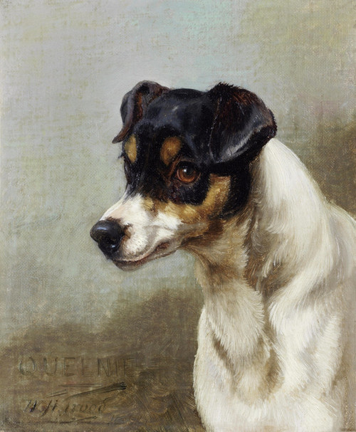 Art Prints of Queenie, a Terrier by William Henry Hamilton Trood