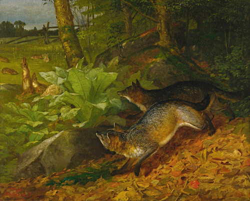 Art Prints of Foxes and Rabbits by William Holbrook Beard