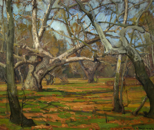 Art Prints of Oaks and Sycamores II by William Wendt
