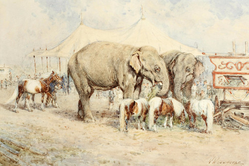 Art Prints of Circus Elephants and Ponies by William Woodhouse