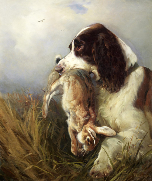Art Prints of Spaniel Retrieving a Hare by William Woodhouse