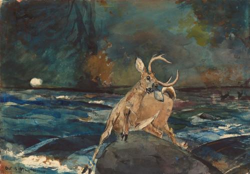 Art Prints of A Good Shot, Adirondacks by Winslow Homer