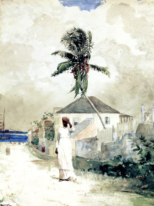 Art Prints of Along the Road, Bahamas by Winslow Homer