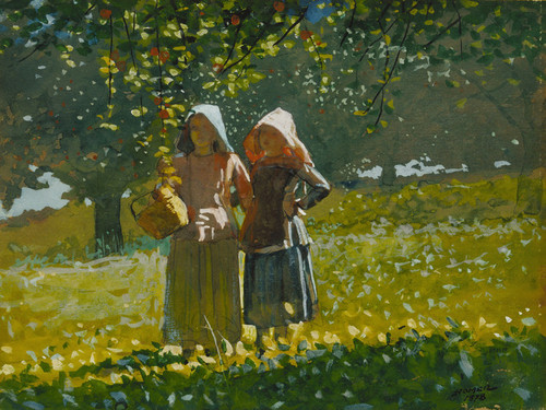 Art Prints of Apple Picking by Winslow Homer