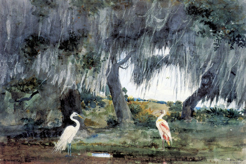 Art Prints of At Tampa by Winslow Homer