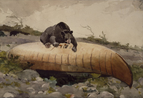Art Prints of Bear and Canoe by Winslow Homer