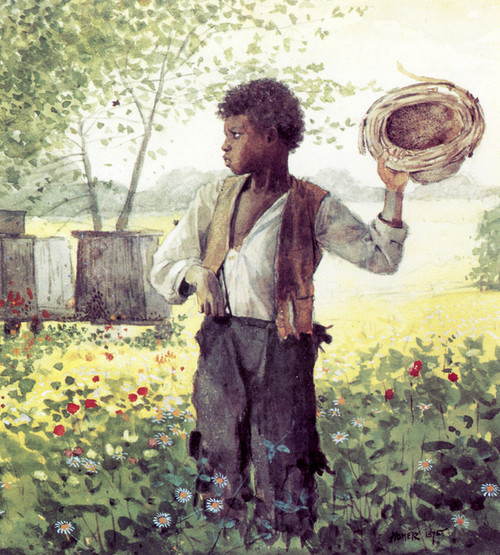Art Prints of Busy Bee by Winslow Homer