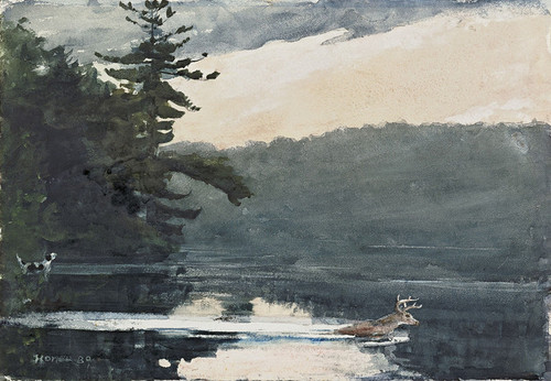 Art Prints of Deer in the Adirondacks by Winslow Homer