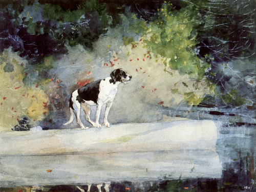 Art Prints of Dog on a Log by Winslow Homer