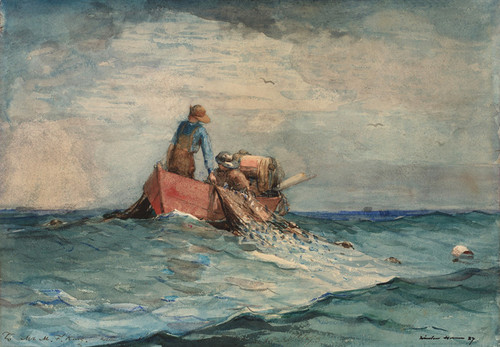 Art Prints of Hauling in the Nets by Winslow Homer