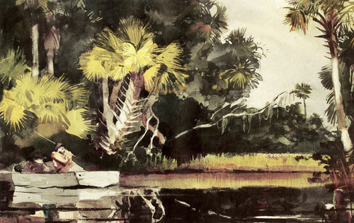 Art Prints of Homosassa Jungle by Winslow Homer