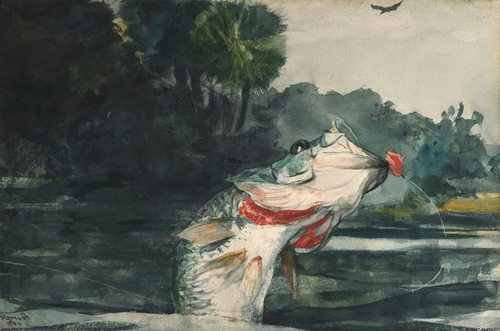 Art Prints of Life Size Black Bass by Winslow Homer
